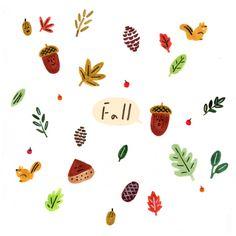 가을도토리