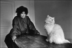 Portraits of Argentine surrealist artist Leonor Fini and her cats Max Ernst, Dora Maar, George Balanchine, Henri Cartier Bresson, Magnum Photos, French Photographers, Portrait Photographers, Man Ray, Son Chat
