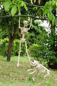 - Outdoor Halloween decorations are becoming more and more popular every year. One of the greatest past times for this particular holiday is to make you. halloween manualidades Impressive DIY Outdoor Halloween Decorating Ideas That Nobody Tell You About Halloween Camping, Halloween Tags, Halloween Prop, Halloween Outside, Halloween Skeleton Decorations, Outdoor Halloween, Halloween 2019, Holidays Halloween, Halloween Crafts