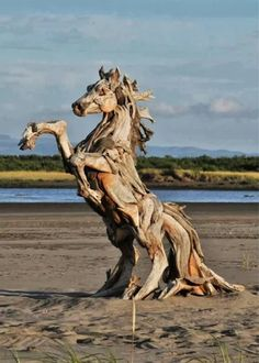 Driftwood horse.  Earth Art at its finest