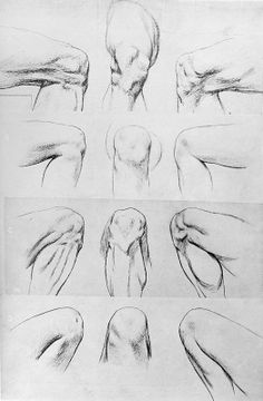 Drawing The Human Figure - Tips For Beginners - Drawing On Demand Figure Drawing Tutorial, Male Figure Drawing, Drawing Practice, Life Drawing, Anatomy Sketches, Body Sketches, Art Sketches, Human Body Drawing, Human Anatomy Drawing
