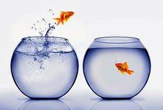 Perubahan Mendasar dan Perubahan Parsial