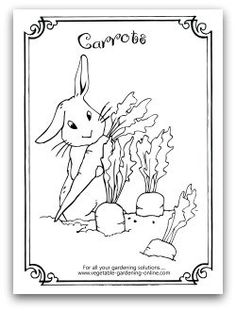 Bunny Eating A Carrot Free Vegetable Garden Coloring Books Printable Activity Pages For Kids