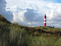 Nationalpark Wattenmeer - Leuchtturm auf der Insel Amrum