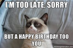 Are you looking for a happy birthday cat meme? These cute and witty cat memes are guaranteed to bring joy to anyone celebrating their birthday today. Funny Shit, Funny Cats, Hilarious, Funny Stuff, Grumpy Cat Meme, Cat Memes, Funny Memes, Grumpy Quotes, Grumpy Kitty