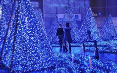 Festive illumination in Tokyo