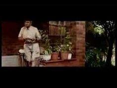 Steve Hoffmeyr - Pampoen - YouTube Quotes Dream, Life Quotes Love, Robert Kiyosaki, Napoleon Hill, Afrikaans, Tony Robbins, Music Videos, Songs, People