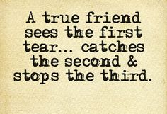 A true friend sees the first tear... catches the second & stops the third.