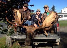 Monster Bull Moose Taken in New Brunswick | Outdoor Life