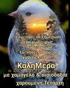 Good Morning, Good Day, Bonjour, Bom Dia