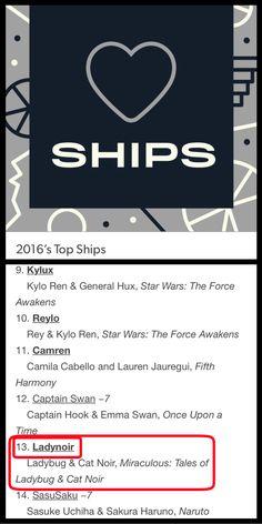 LadyNoir made the top twenty 2016 ships on Tumblr!!!