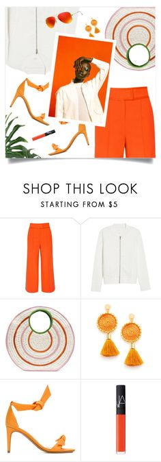 """Spring Summer Trend"" by magdafunk ❤ liked on Polyvore featuring Diane Von Furstenberg, Caslon, Sophie Anderson, Alexandre Birman, Ray-Ban, orange, sandals, raffiabag, whitebomberjacket and ss2018"