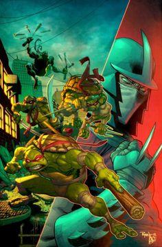 Ninja Turtles & Shredder