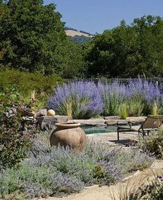 Lavender, stone and those pencil Italian Cedars... it's one of those combinations that elicits a sigh of delight and makes my heart sing.   ...