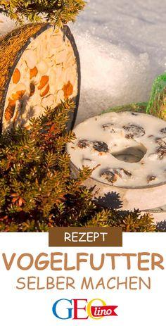 Wie ihr Vogelfutter selbst zaubern könnt, verraten wir euch mit diesem Rezept. #vogelfutter #vögelfüttern #diy #doityourself #rezeptidee #vögel #natur #draussen Blusher, Christmas Bulbs, Holiday Decor, Painting, Outdoor, Geo, Kids, Inspiration, Pictures