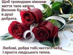 На вас чекає 18 нових пінів - huslavska@meta.ua Orange Rose Bouquet, Orange Roses, Happy Birthday Wishes, Happy Anniversary, Holidays And Events, Diy And Crafts, Greeting Cards, Flowers, Fun
