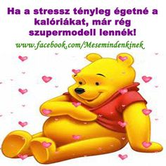Winnie The Pooh, Funny Quotes, Happiness, Smile, Health, Happy, Fictional Characters, Te Amo, Bite Size