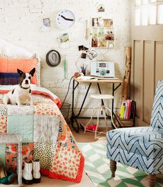 Painted brick walls patterned quilt (with cute puppy!), love! Urban Outfitters Home Lookbook apartamenty