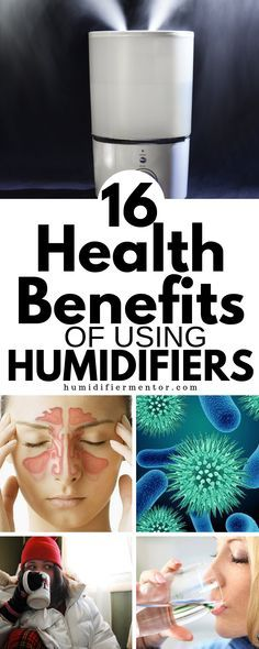 When To Use a Humidifier? (Winter, Spring, Summer, Autumn