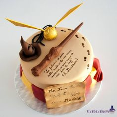 Harry Potter birthday cake by Catcakes