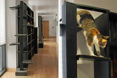 CAT STAIRS & WINDOW LEDGES  The tall bookcases that line the hallway are natural perches for cats. To give safe access, they created a circular staircase, with carpeted treads, that allows even the older male cat to ascend easily, with intermediate platforms for resting along the way. It attaches to a bookcase with a simple wooden hook and a single screw, and has a detachable weighted base for stability. Assembly or disassembly and packing take only minutes with a single tool.