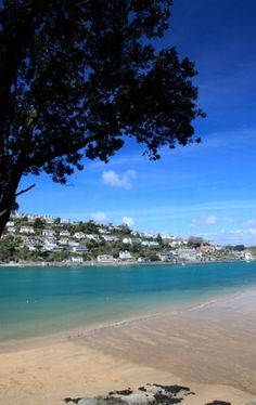 View of Salcombe from Mill Bay...... I spent my childhood on this beach.