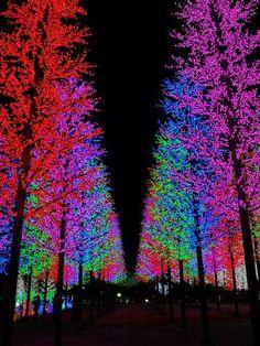 City of digital lights, Sha Alam, Malaysia
