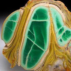 Variscite with Crandallite from Clay Canyon, Fairfield, Utah [db_pics/pics/tu179b.jpg]