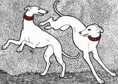 Whippets Greyhound Art, Italian Greyhound, Most Beautiful Dogs, Lurcher, Dog Lady, Wolfhound, Dog Signs, Leather Dog Collars, Dog Paintings