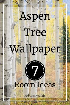 7 Room Ideas with Aspen Tree Wallpaper See 7 ways to use this Aspen Tree Wallpaper in your rooms! Tree Wallpaper Room, Tree Wallpaper Modern, Birch Tree Wallpaper, Forest Wallpaper, Birch Tree Mural, Tree Wall Murals, Kumquat Tree, Tree Bedroom, Forest Mural