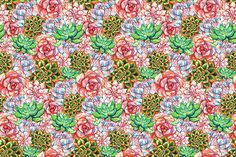 Watercolor succulent plant pattern by Art By Silmairel on @creativemarket