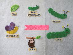 Butterfly Life Cycle felt set
