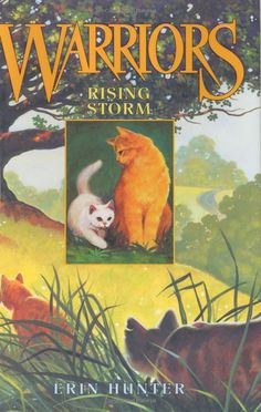 Rising Storm (Warrior Cats, Book 4): Erin Hunter