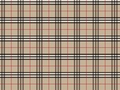 """BurberryPlaid Fabric 