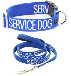 SERVICE DOG Blue Color Coded S M L XL Buckle Dog Collar and 2 4 6 Foot Padded Leash Sets (Do Not Disturb) PREVENTS Accidents By Warning Others of Your Dog in Advance (L-XL Collar and 4 Foot Standard Leash) ** Quickly view this special dog product, click the image : Dog leash