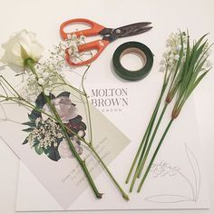 Getting green fingered with @moltonbrown with a floral master class to celebrate their new Dewy Lily Of The Valley & Star Anise collection fragrance #moltonbrown #MBForeverFloral #bbloggers