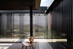 Chen Chow Little  Freshwater house