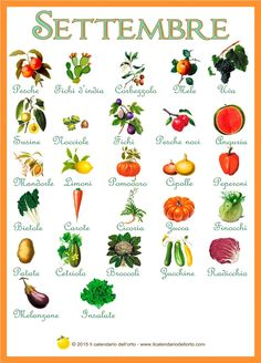 frutta e verdura di stagione Healthy Menu, Healthy Life, Healthy Eating, Healthy Recipes, Food N, Food And Drink, In Natura, Juice Plus, Learning Italian