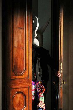 Rabbit behind the door?