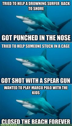 hahaha...Sharks. Just trying to help people out. With big mouths and lots of teeth.