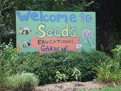 SEEDS & DIG Community Gardens: Durham, NC