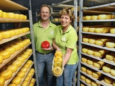 Onze kaasboerderij in Zuid Holland (Hoogmade om precies te zijn) heeft zich gespecialiseerd in de productie van kleine kazen.