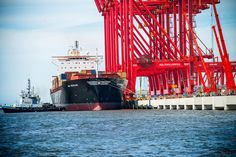 MSC to provide vessels for Liverpool2 trials