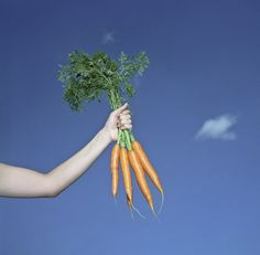 Follow these ten simple steps to free up your weeknights and become the Queen of Carrots, for starters.