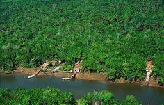 Amazônia.Brasil