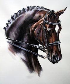Horse portrait, pferdekunst galerie- dressage || black dressage art