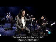 Diego el Cigala y Nestor Marconi en el Gran Rex. Tomo y Obligo