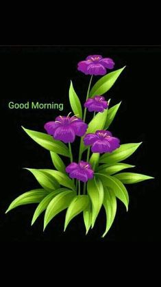 Good Morning Beautiful Gif, Good Morning Sunday Images, Good Morning Photos Download, Good Morning Funny Pictures, Good Night I Love You, Good Morning Cards, Good Morning Flowers, Good Morning Good Night, Good Morning Wishes