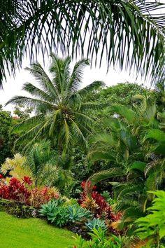 Stunning 47 Change Your Garden With Tropical Landscape Design You'll Love decora… - Garten Landschaftsgestaltung Tropical Garden Design, Tropical Landscaping, Tropical Plants, Garden Landscaping, Landscaping Ideas, Tropical Gardens, Palm Trees Landscaping, Tropical Patio, Florida Landscaping