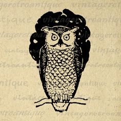 Digital Image Owl Download Bird Illustration Graphic Printable